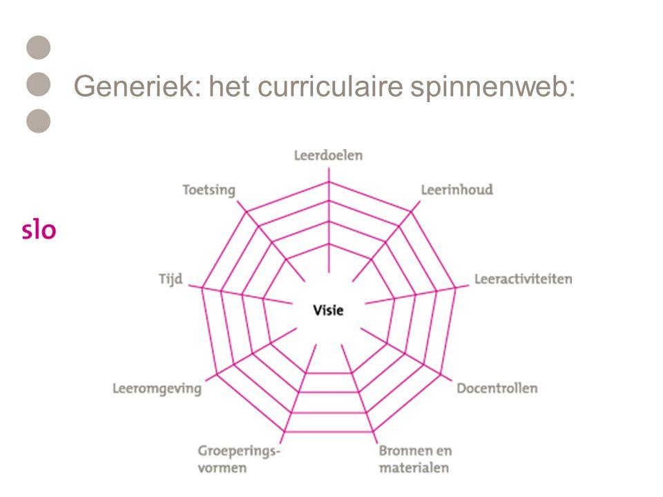 Generiek: het curriculaire spinnenweb: