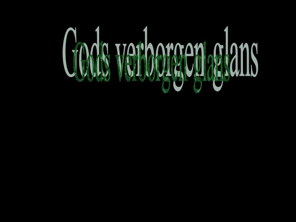Zondag 28 december Exodus 2: 1-11 Gered dankzij God