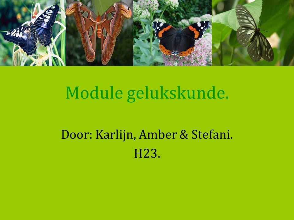 Module gelukskunde. Door: Karlijn, Amber & Stefani. H23.