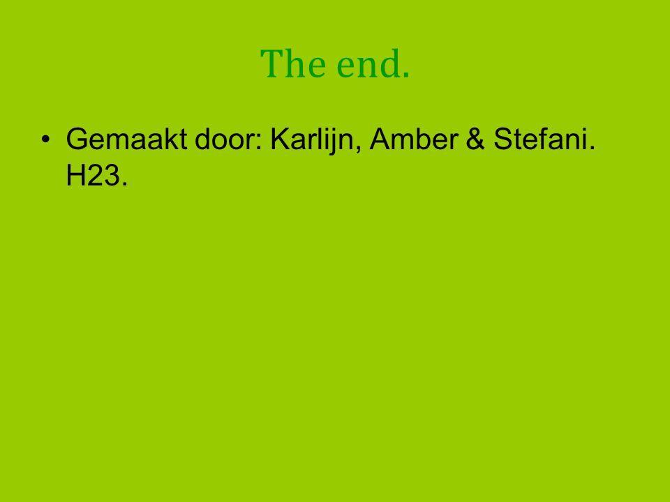 The end. •Gemaakt door: Karlijn, Amber & Stefani. H23.