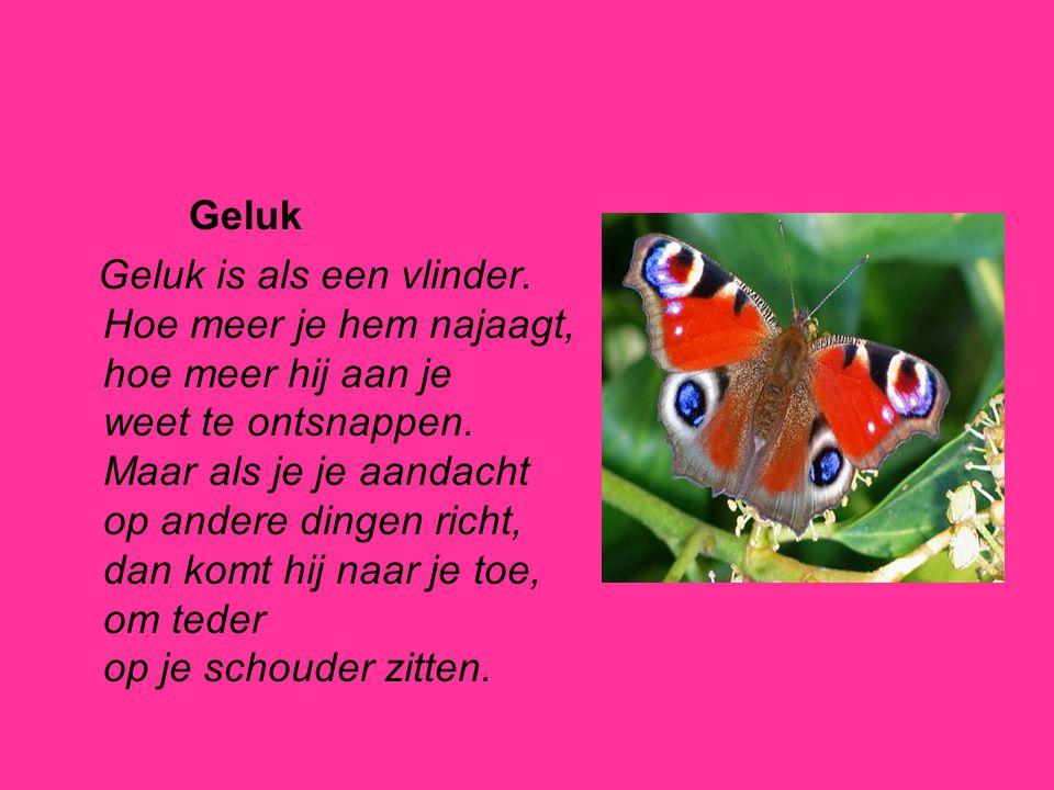 Geluk Geluk is als een vlinder. Hoe meer je hem najaagt, hoe meer hij aan je weet te ontsnappen. Maar als je je aandacht op andere dingen richt, dan k