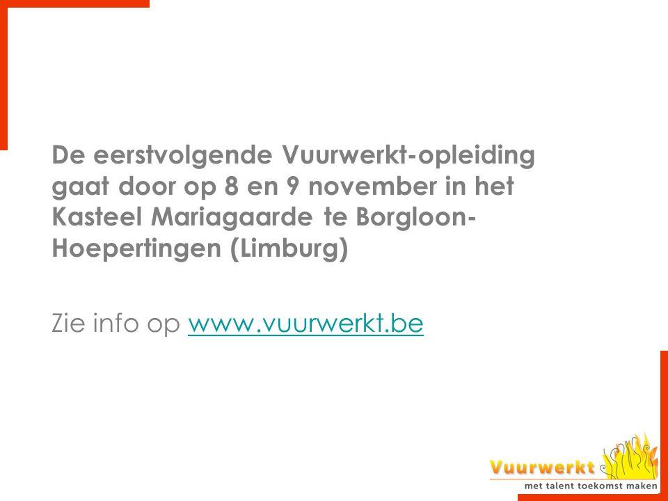 De eerstvolgende Vuurwerkt-opleiding gaat door op 8 en 9 november in het Kasteel Mariagaarde te Borgloon- Hoepertingen (Limburg) Zie info op www.vuurw