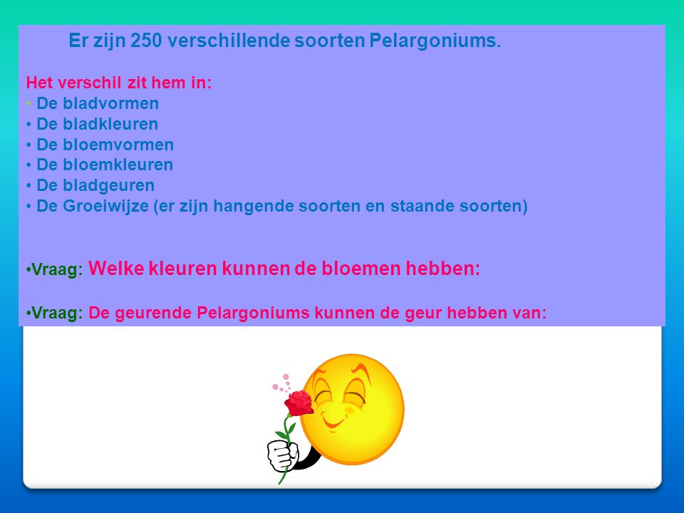 Afbeeldingen Afbeeldingen D e Geranium De pelargonium