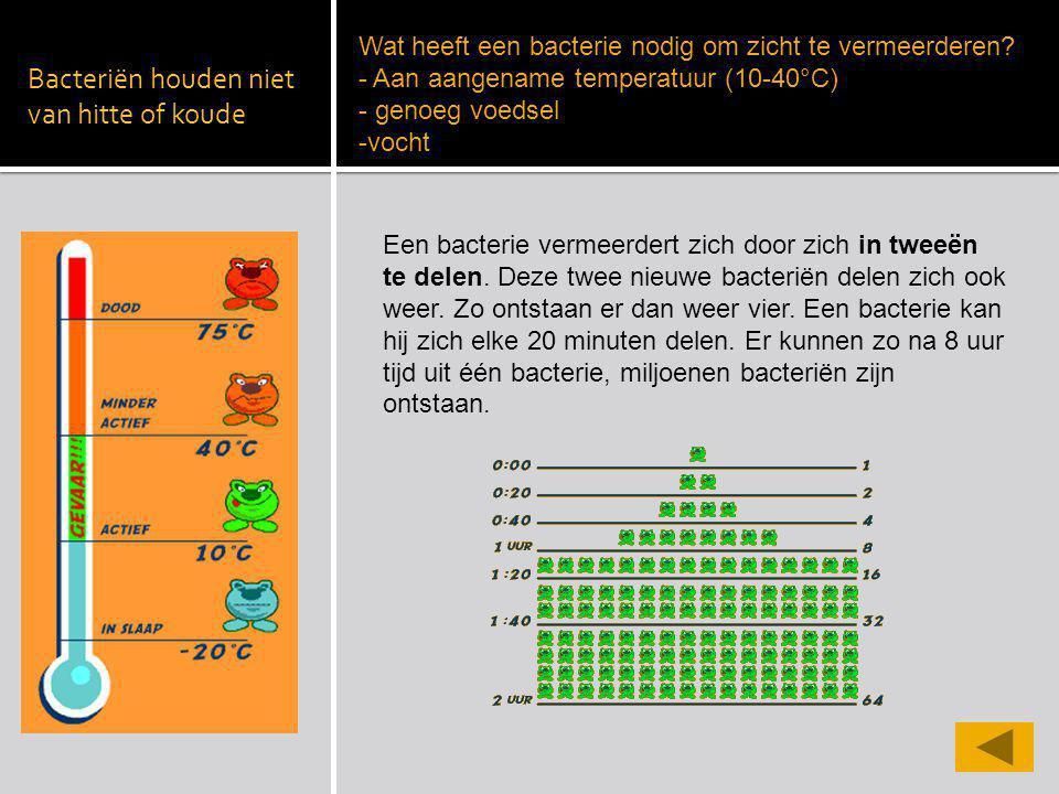 Bacteriën houden niet van hitte of koude Wat heeft een bacterie nodig om zicht te vermeerderen? - Aan aangename temperatuur (10-40°C) - genoeg voedsel