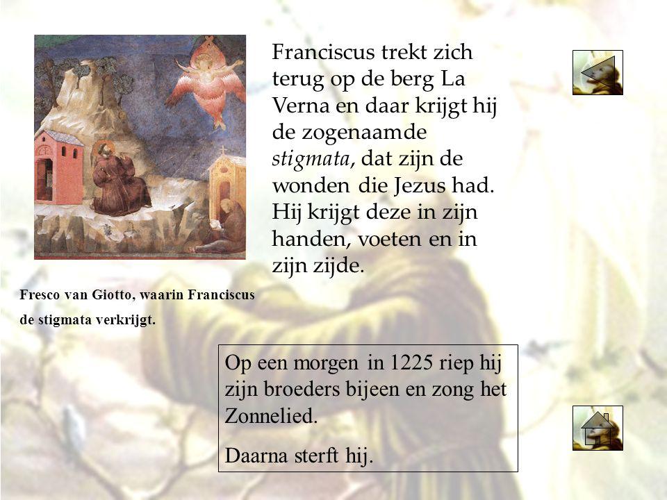 Franciscus trekt zich terug op de berg La Verna en daar krijgt hij de zogenaamde stigmata, dat zijn de wonden die Jezus had. Hij krijgt deze in zijn h
