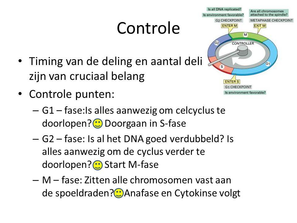 Controle • Timing van de deling en aantal delingen zijn van cruciaal belang • Controle punten: – G1 – fase:Is alles aanwezig om celcyclus te doorlopen