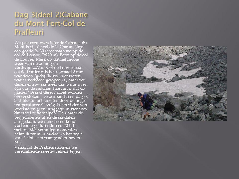 Dag 5 (deel5) We proberen nog voor 16 uur aan een berglift te geraken om zo naar Zinal te gaan.