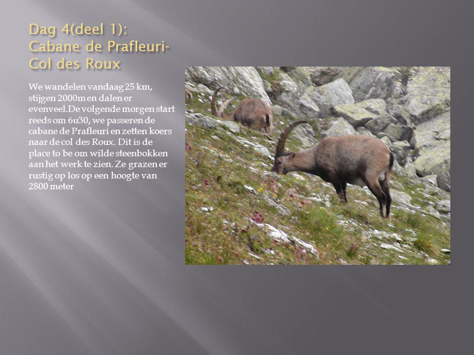Dag 8, deel 1 Europahutte-Randa We dalen vandaag 1000 m en stijgen een 200 tal m.