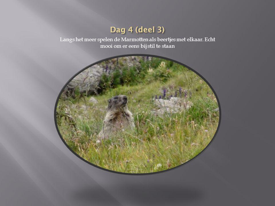 Dag 4(deel 2):Lac des dix-Pas du Chat We stappen vervolgens een heel eind langs de Lac des dix.