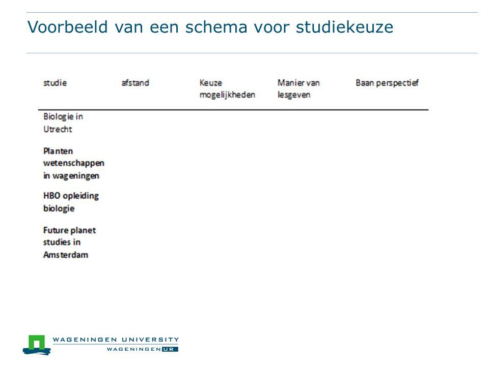Voorbeeld van een schema voor studiekeuze