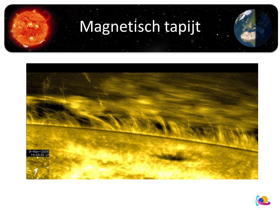 Magnetisch tapijt