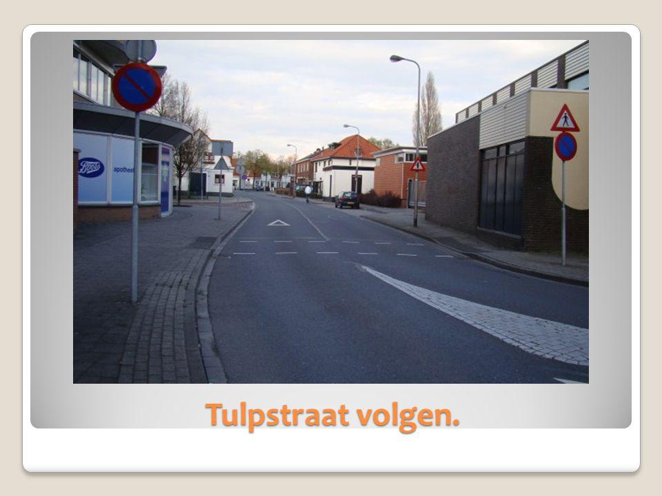 Tulpstraat volgen.