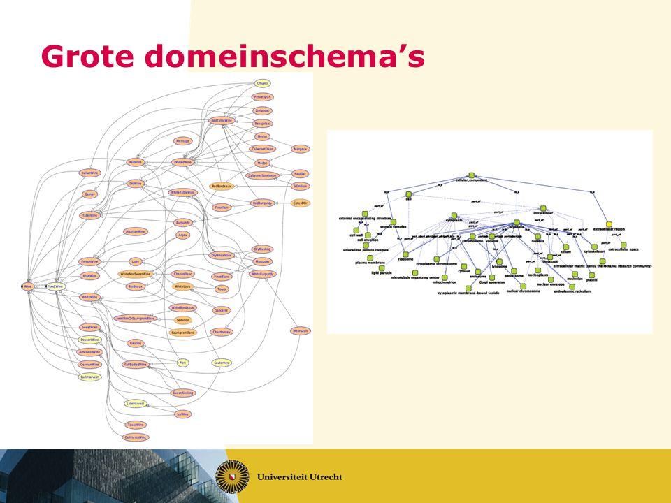 Grote domeinschema's
