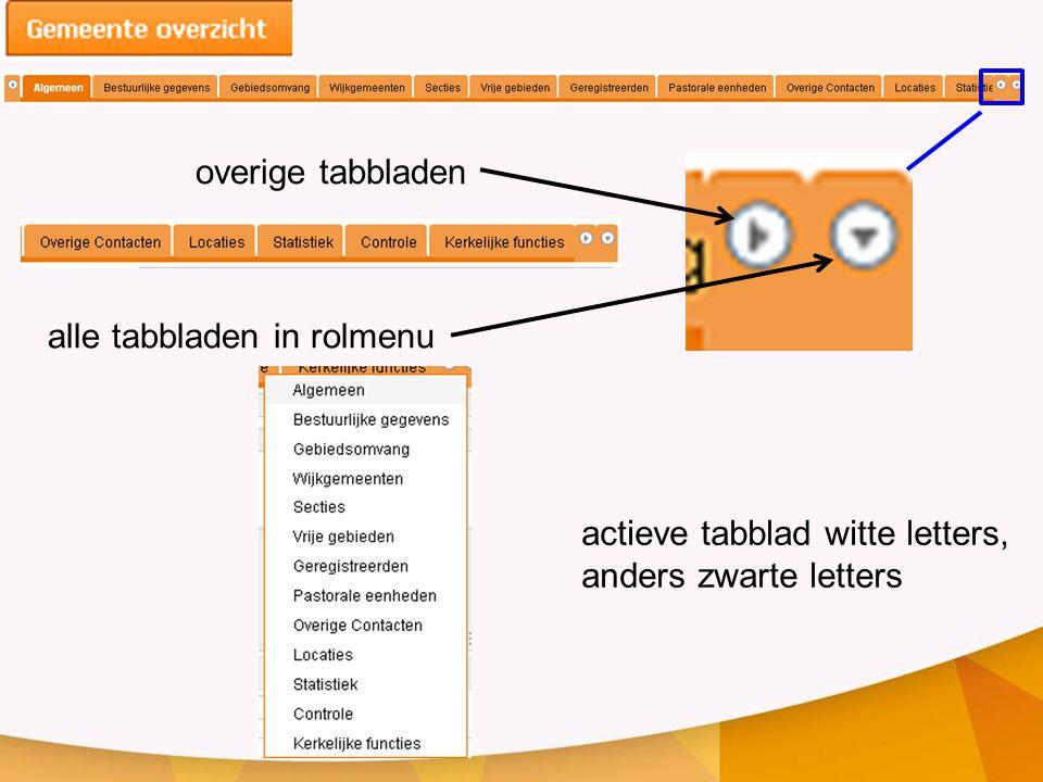 overige tabbladen alle tabbladen in rolmenu actieve tabblad witte letters, anders zwarte letters