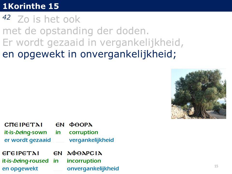 1Korinthe 15 42 Zo is het ook met de opstanding der doden.