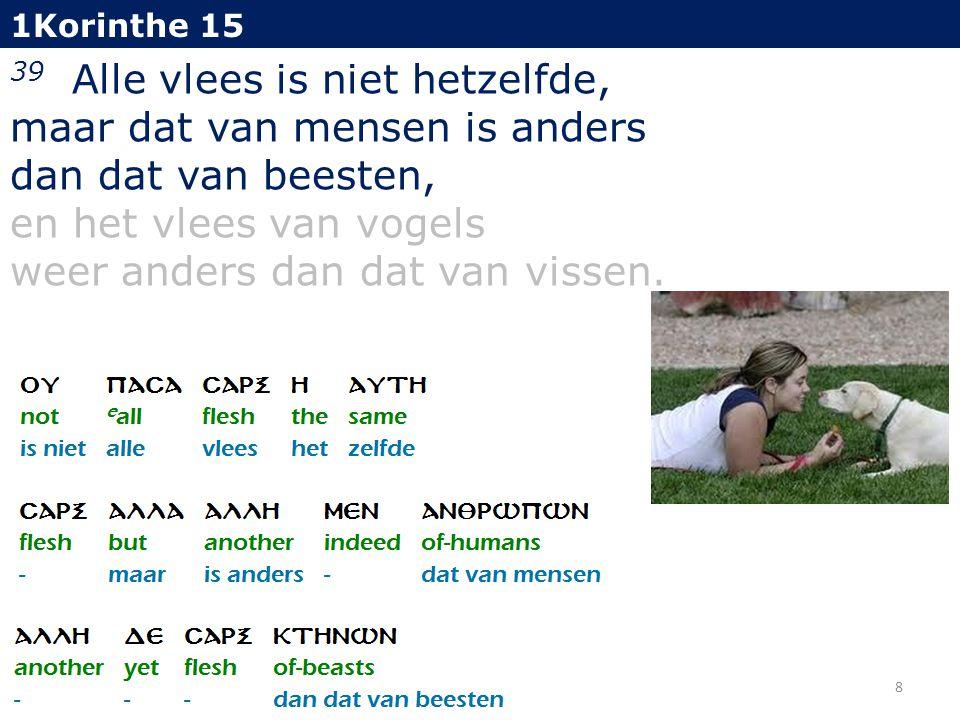 1Korinthe 15 39 Alle vlees is niet hetzelfde, maar dat van mensen is anders dan dat van beesten, en het vlees van vogels weer anders dan dat van vissen.