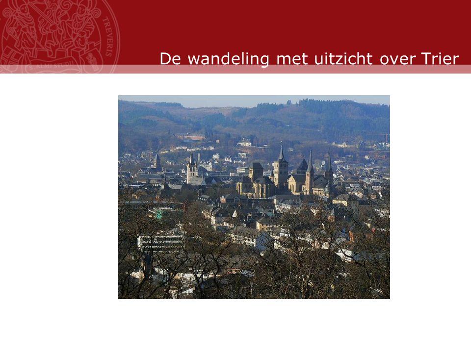 Stand: November 2007 De wandeling met uitzicht over Trier