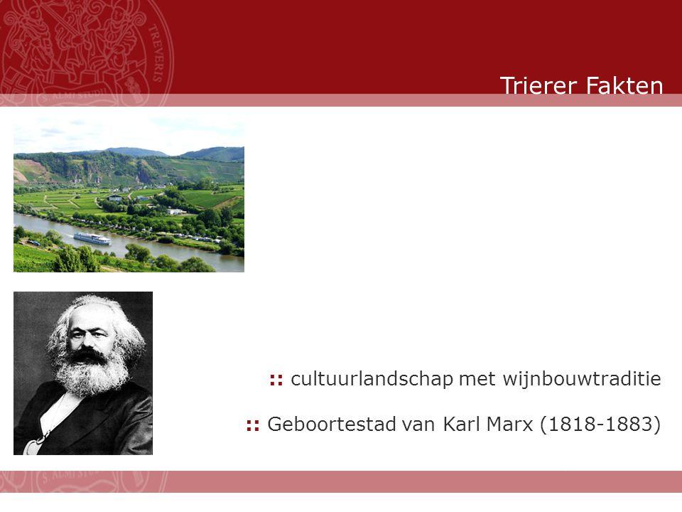 Stand: November 2007 :: cultuurlandschap met wijnbouwtraditie :: Geboortestad van Karl Marx (1818-1883) Trierer Fakten