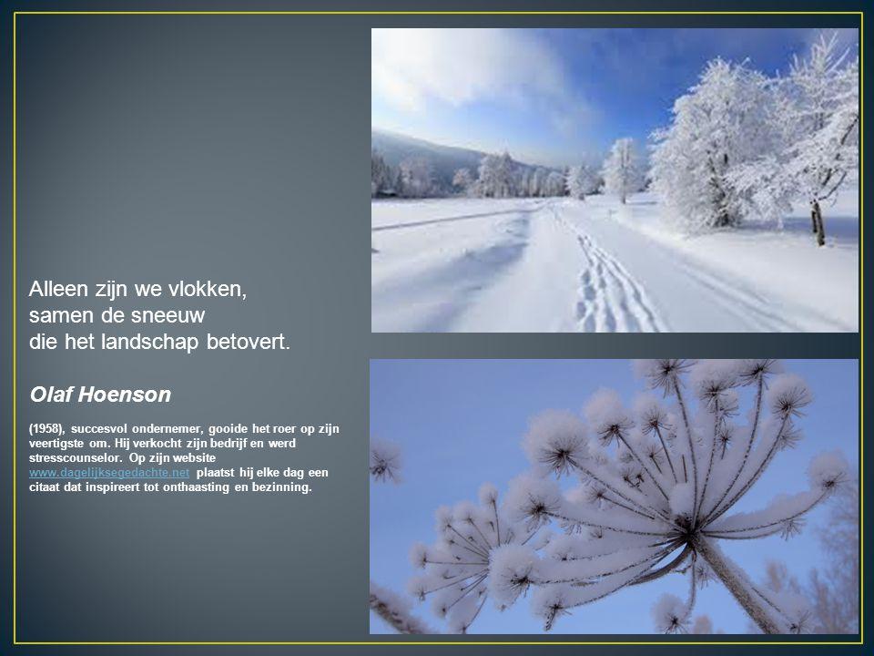 Alleen zijn we vlokken, samen de sneeuw die het landschap betovert. Olaf Hoenson (1958), succesvol ondernemer, gooide het roer op zijn veertigste om.