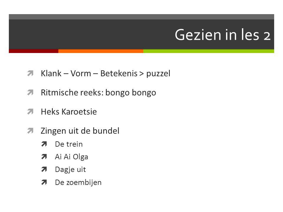 Gezien in les 2  Klank – Vorm – Betekenis > puzzel  Ritmische reeks: bongo bongo  Heks Karoetsie  Zingen uit de bundel  De trein  Ai Ai Olga  Dagje uit  De zoembijen