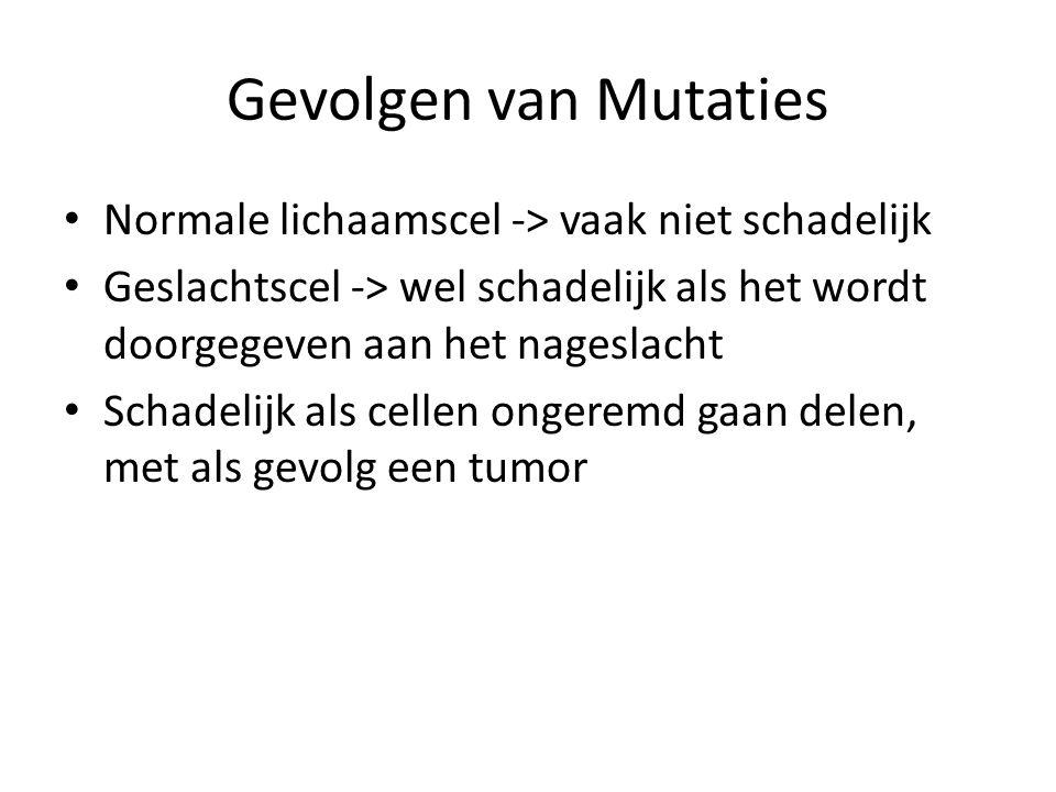 Gevolgen van Mutaties • Normale lichaamscel -> vaak niet schadelijk • Geslachtscel -> wel schadelijk als het wordt doorgegeven aan het nageslacht • Schadelijk als cellen ongeremd gaan delen, met als gevolg een tumor