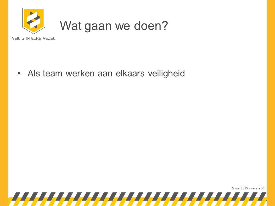 © mei 2013 – versie 00 •Als team werken aan elkaars veiligheid Wat gaan we doen?