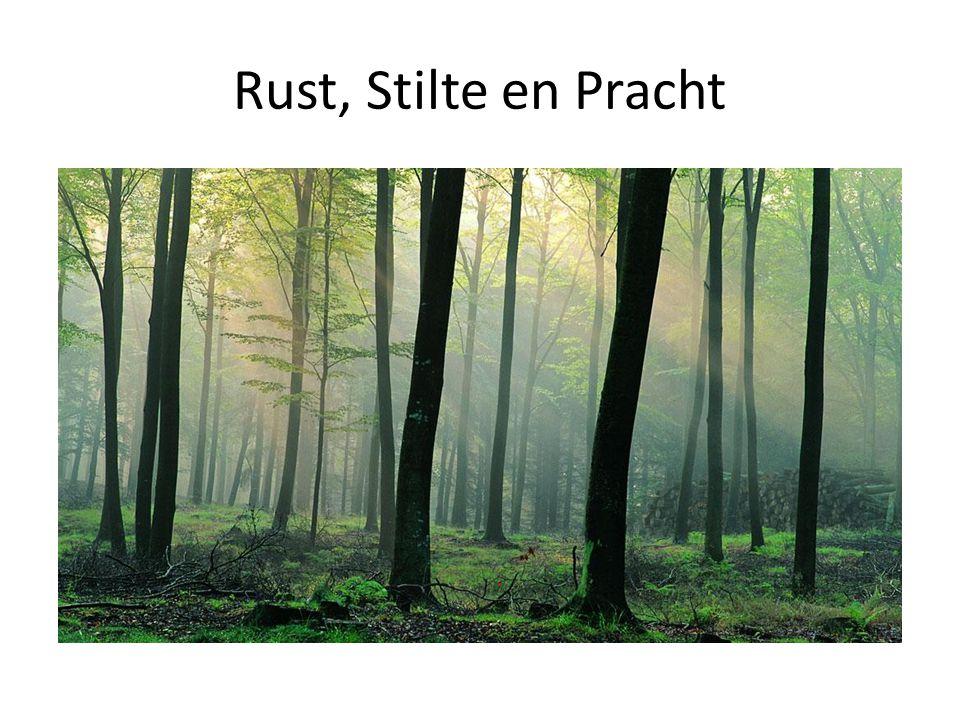 Rust, Stilte en Pracht