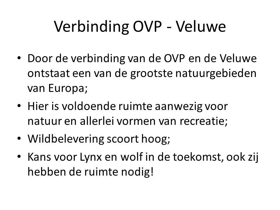 Verbinding OVP - Veluwe • Door de verbinding van de OVP en de Veluwe ontstaat een van de grootste natuurgebieden van Europa; • Hier is voldoende ruimte aanwezig voor natuur en allerlei vormen van recreatie; • Wildbelevering scoort hoog; • Kans voor Lynx en wolf in de toekomst, ook zij hebben de ruimte nodig!