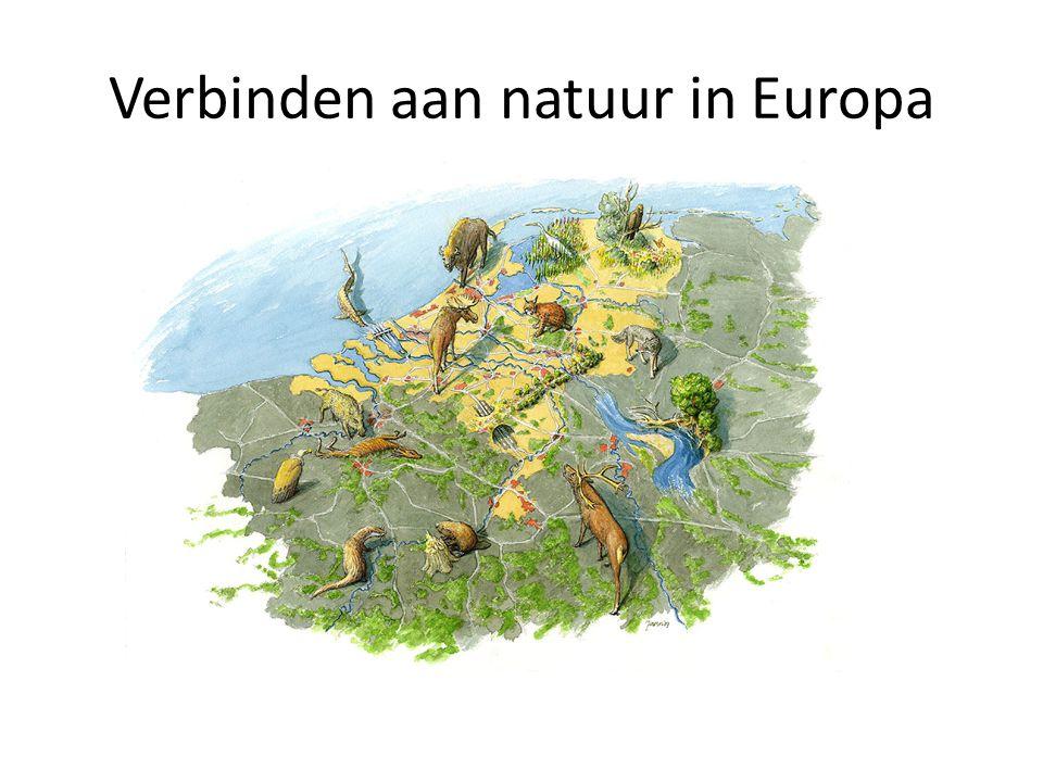 Verbinden aan natuur in Europa