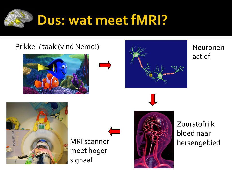 Neuronen actief Zuurstofrijk bloed naar hersengebied MRI scanner meet hoger signaal Prikkel / taak (vind Nemo!)