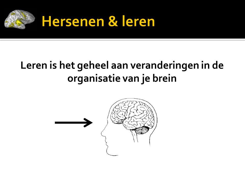 Leren is het geheel aan veranderingen in de organisatie van je brein