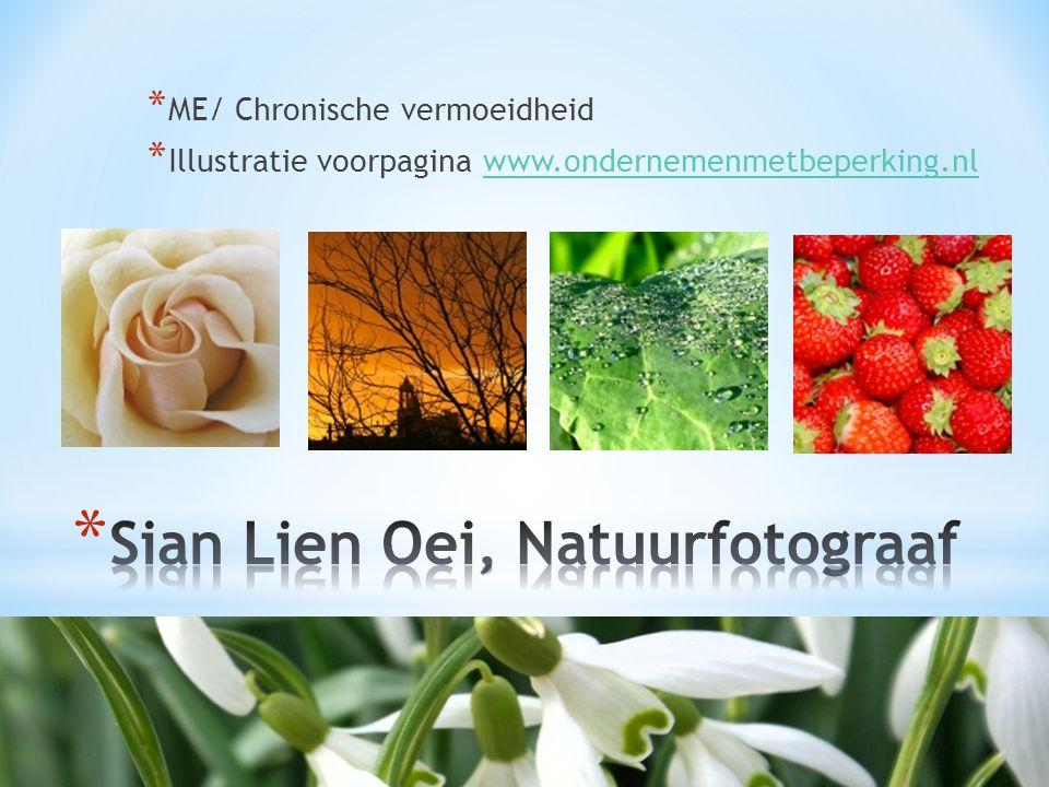 * ME/ Chronische vermoeidheid * Illustratie voorpagina www.ondernemenmetbeperking.nlwww.ondernemenmetbeperking.nl