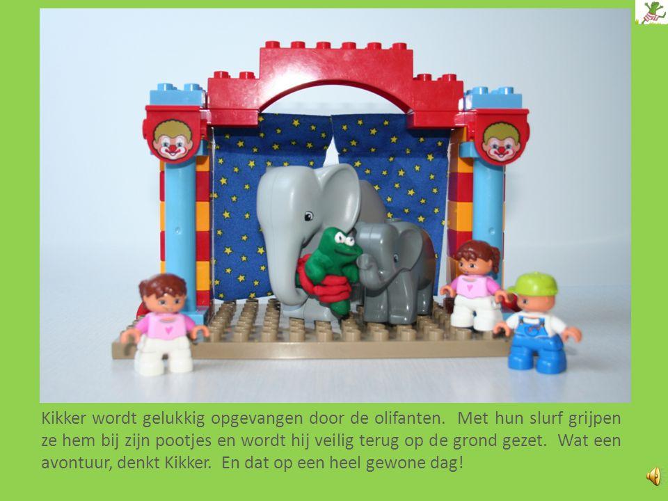 """Op het einde van de wandeling wordt Kikker uitgenodigd in het circus. Hij wordt de """"special act"""" van de avond! Kikker wordt vast gebonden aan een kano"""