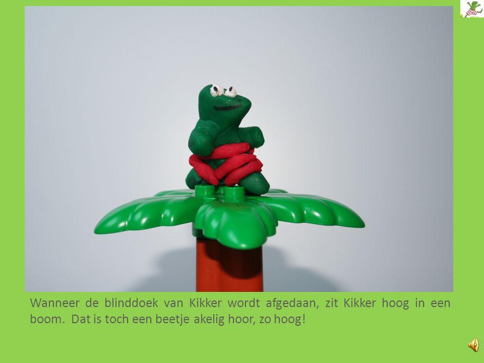 Wanneer de blinddoek van Kikker wordt afgedaan, zit Kikker hoog in een boom.