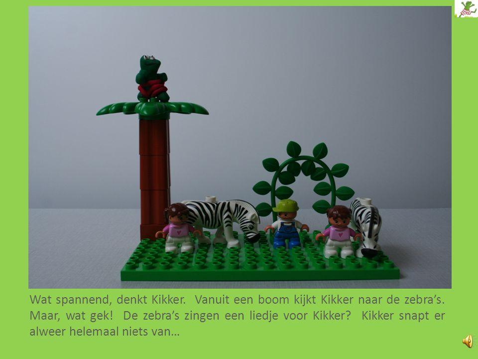 Wat spannend, denkt Kikker.Vanuit een boom kijkt Kikker naar de zebra's.