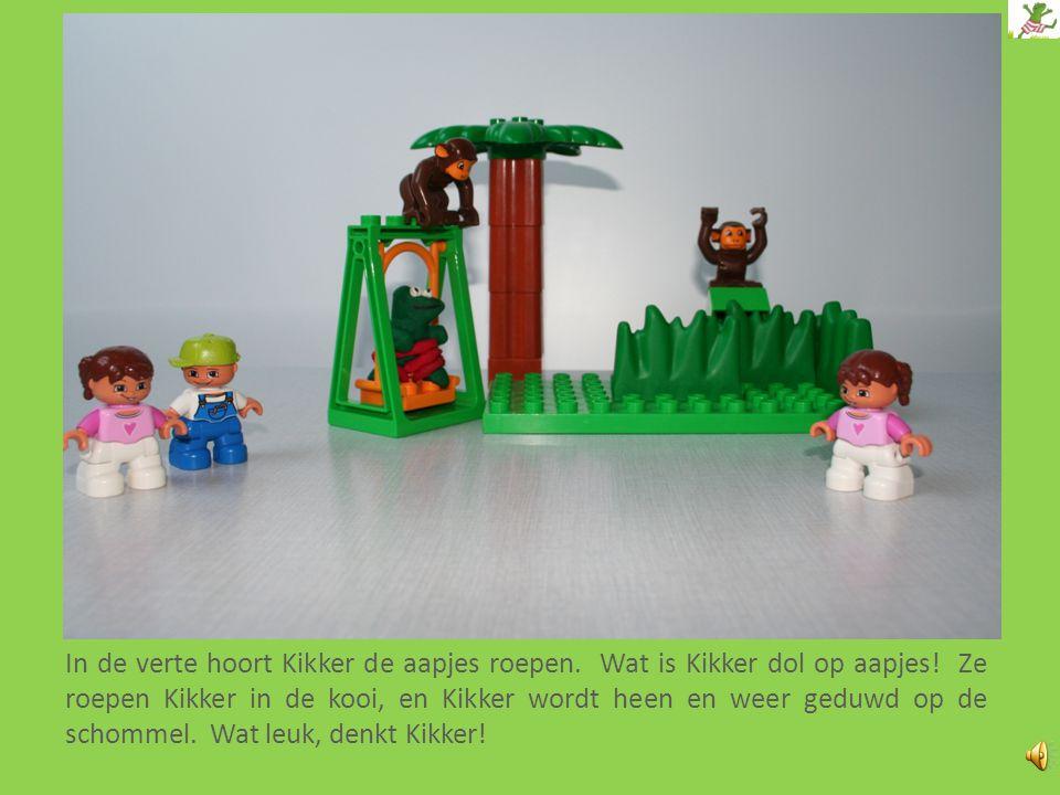 In de verte hoort Kikker de aapjes roepen.Wat is Kikker dol op aapjes.