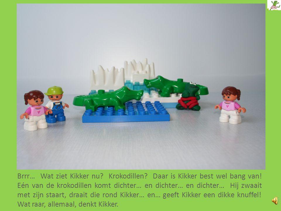 Brrr… Wat ziet Kikker nu.Krokodillen. Daar is Kikker best wel bang van.
