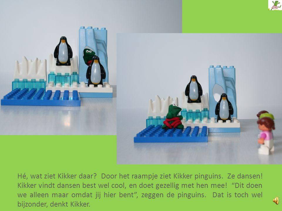 Hé, wat ziet Kikker daar.Door het raampje ziet Kikker pinguins.