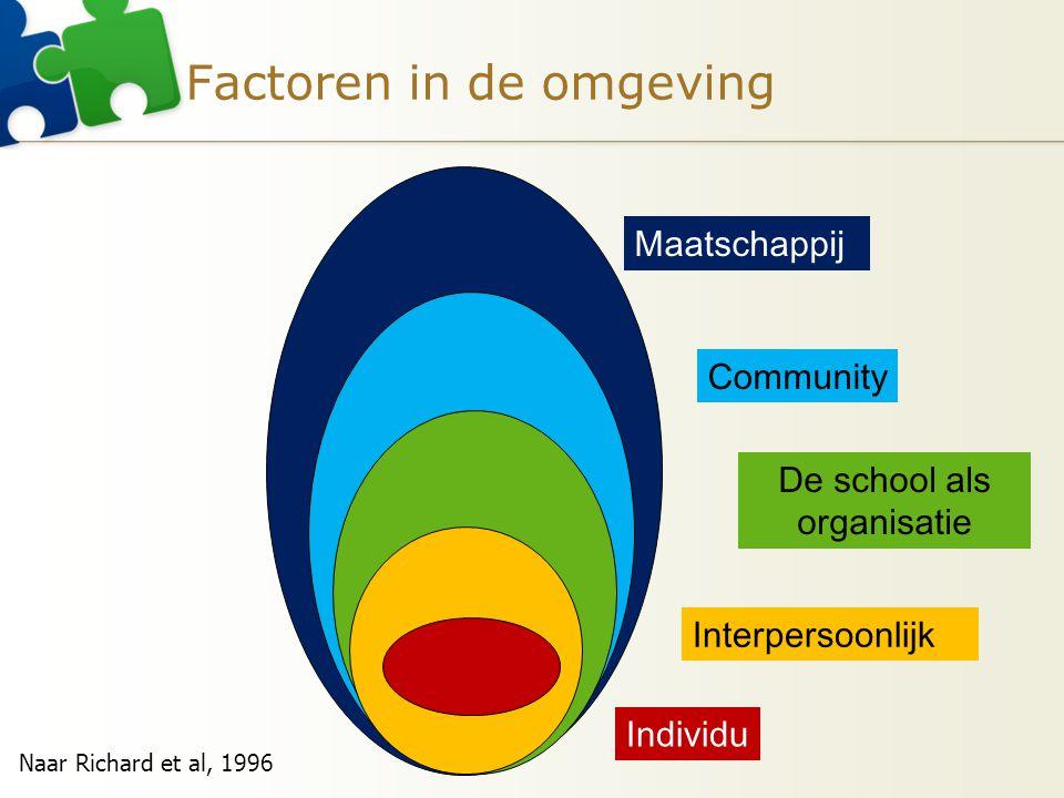 Factoren in de omgeving Individu Interpersoonlijk De school als organisatie Community Maatschappij Naar Richard et al, 1996