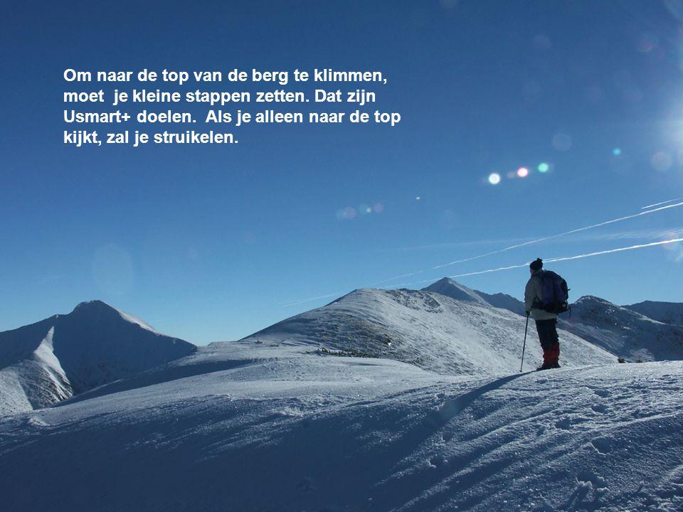 Doelen formuleren Om naar de top van de berg te klimmen, moet je kleine stappen zetten. Dat zijn Usmart+ doelen. Als je alleen naar de top kijkt, zal