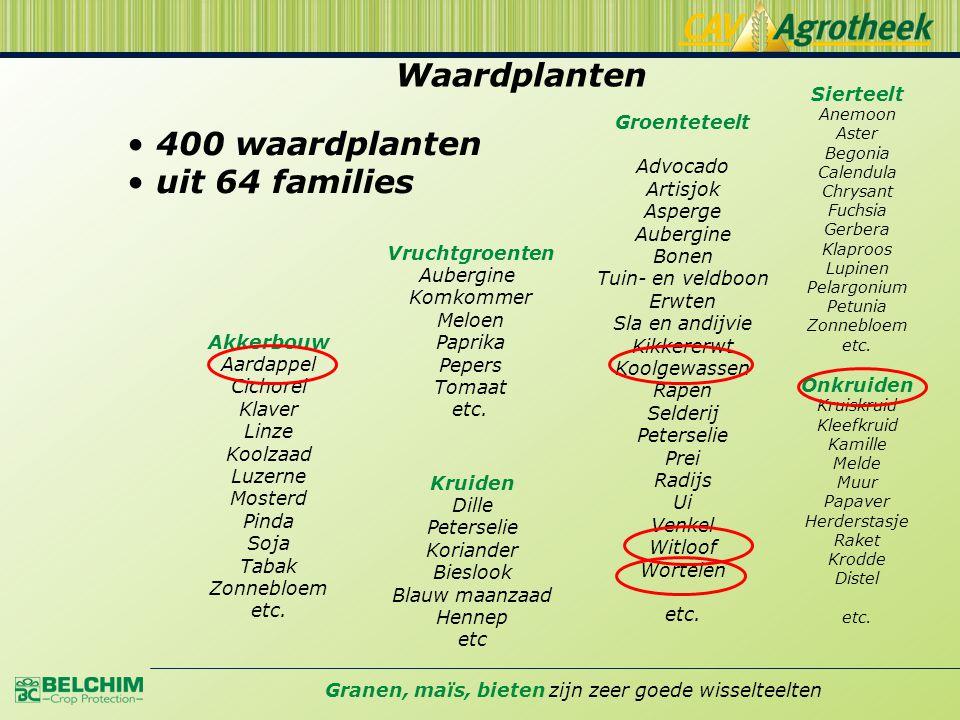 Waardplanten • 400 waardplanten • uit 64 families Akkerbouw Aardappel Cichorei Klaver Linze Koolzaad Luzerne Mosterd Pinda Soja Tabak Zonnebloem etc.