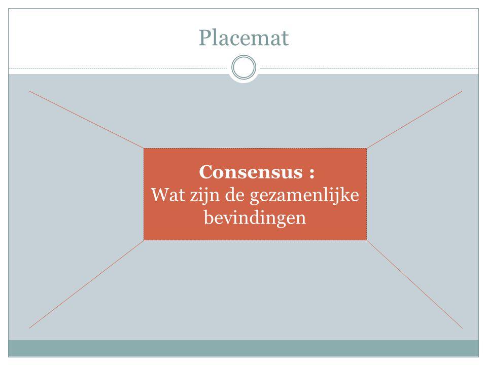 Placemat Consensus : Wat zijn de gezamenlijke bevindingen