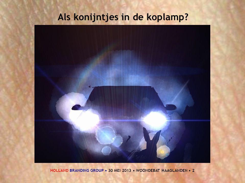 HOLLAND BRANDING GROUP • 30 MEI 2013 • WOONDEBAT HAAGLANDEN • 2 Als konijntjes in de koplamp?