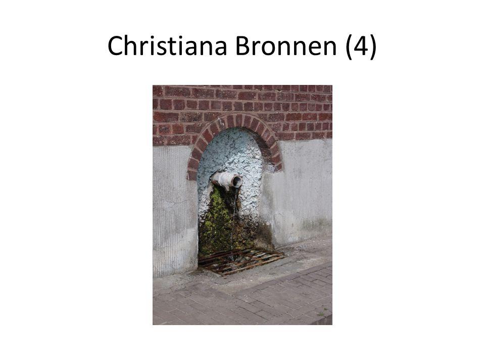 Christiana Bronnen (4)