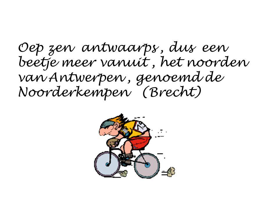 Oep zen antwaarps, dus een beetje meer vanuit, het noorden van Antwerpen, genoemd de Noorderkempen (Brecht)