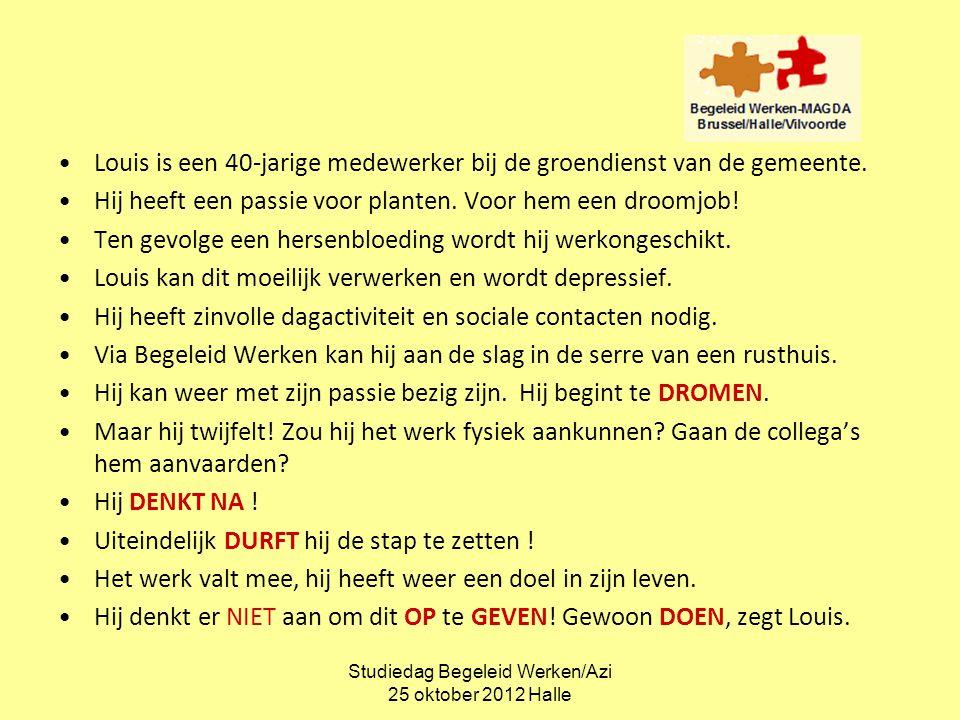 Studiedag Begeleid Werken/Azi 25 oktober 2012 Halle Analyse van het verhaal: DROMEN….