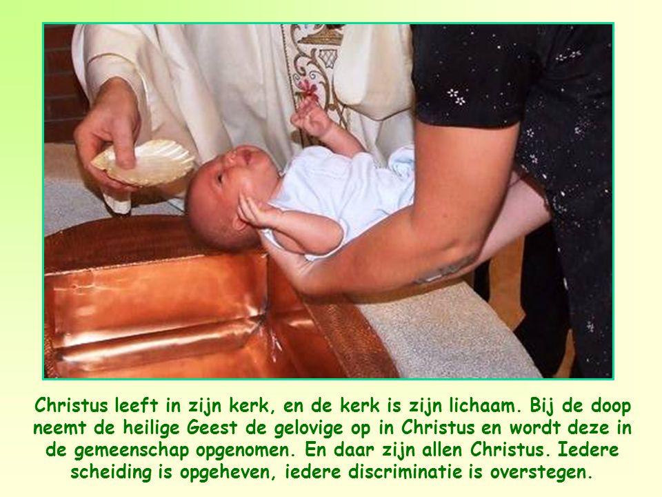 Feit is dat dit bijzondere lichaam dat gevormd wordt door de leden van de gemeenschap, werkelijk het Lichaam is van Christus.