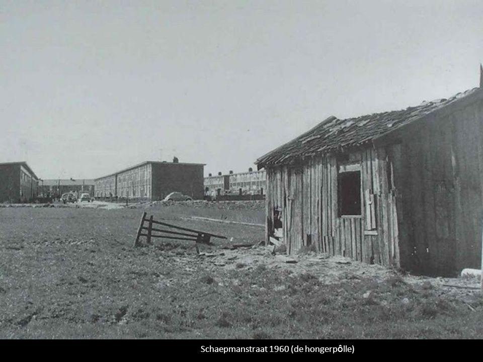 Schaepmanstraat 1960 (de hongerp ô lle)