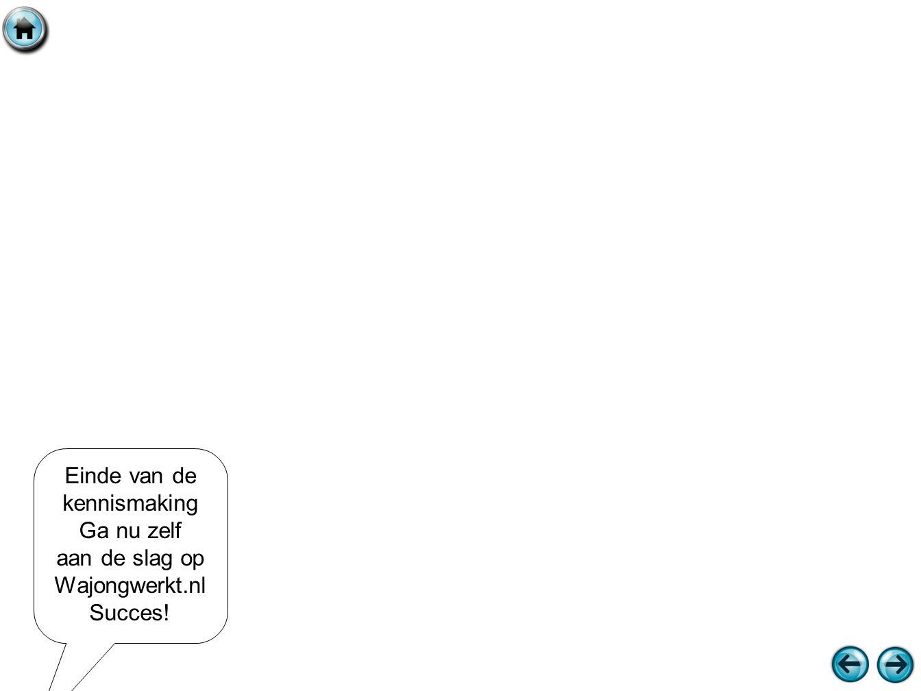 Einde van de kennismaking Ga nu zelf aan de slag op Wajongwerkt.nl Succes!