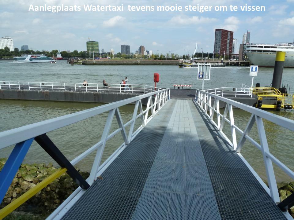 Ingang fietstunnel onder de Nieuwe Maas